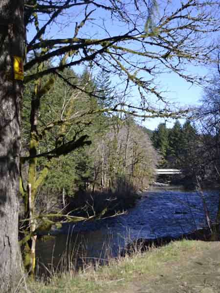 The Wilson River runs along State Highway 6.