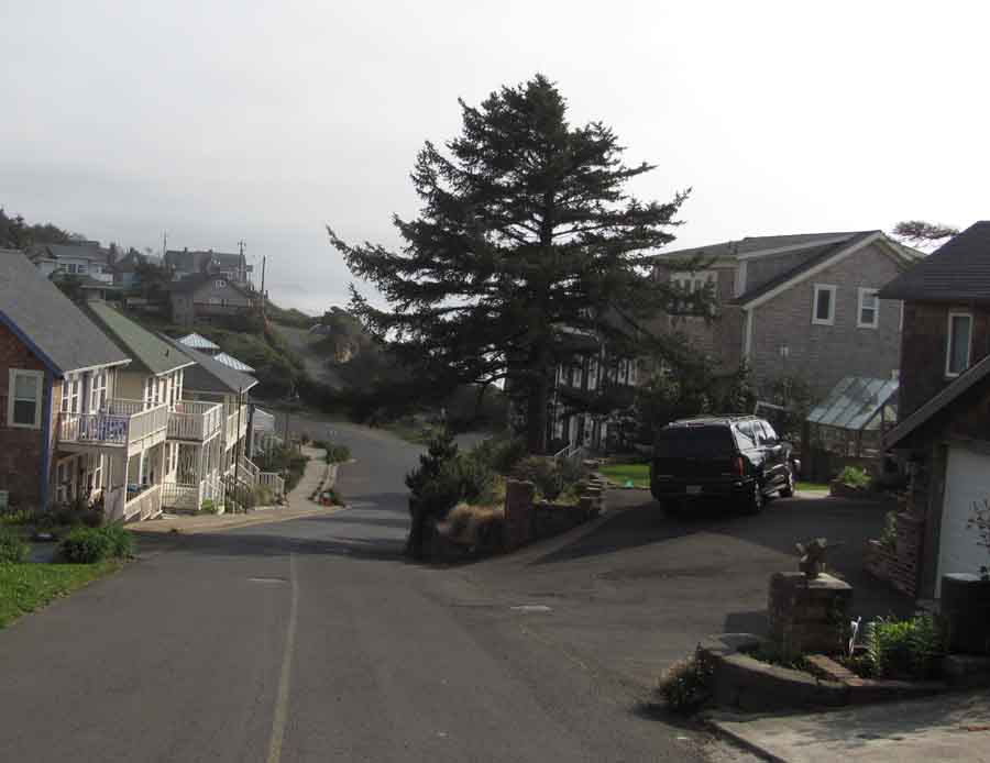 Lincoln City's clifftop homes appear safe above  the shore's tsunami zone.