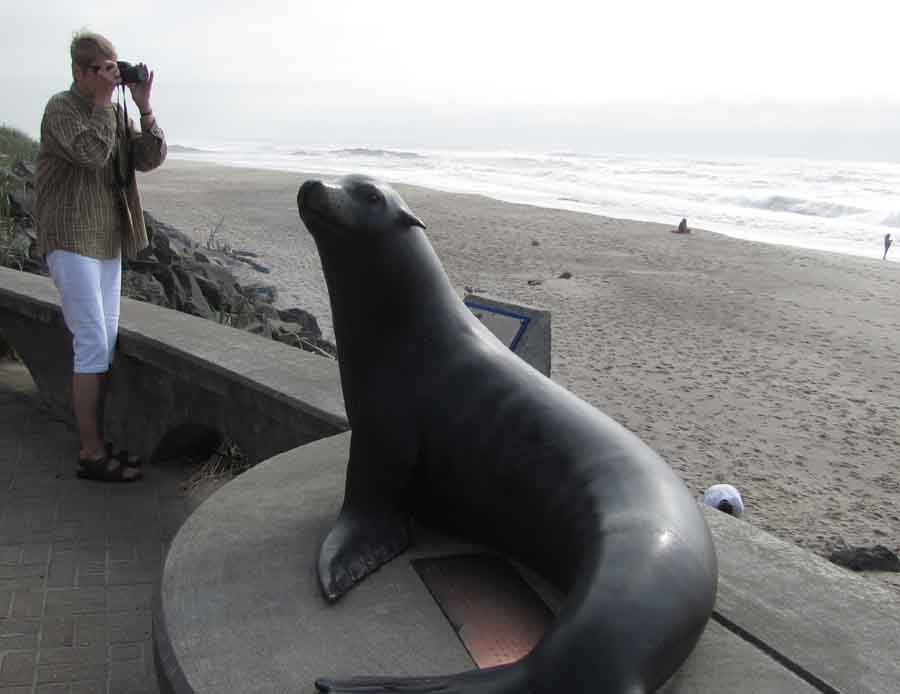 Joe. the memorialized sea lion, seems to approve of Alice's camera work.