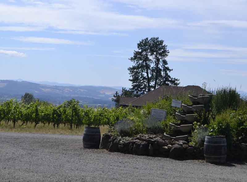 Wine barrels and a rock garden adorn spectacular views of the valley below.